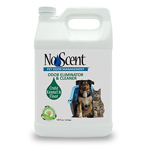 No Scent Crate Kennel & Floor - Professional Dog & Pet Urine Feces Odor Eliminator & Cleaner - Safe All Natural Probiotic & Enzyme Formula Smell Remover Hardwood Concrete Tile Plastic (1 gal) by No Scent Pet Odor Management