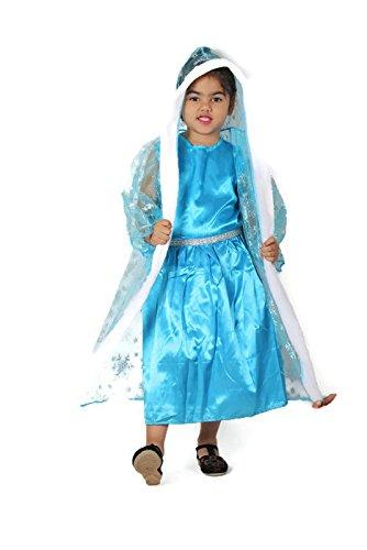 Amazon.com: Frozen disfraz de Elsa inspirado en vestido para ...