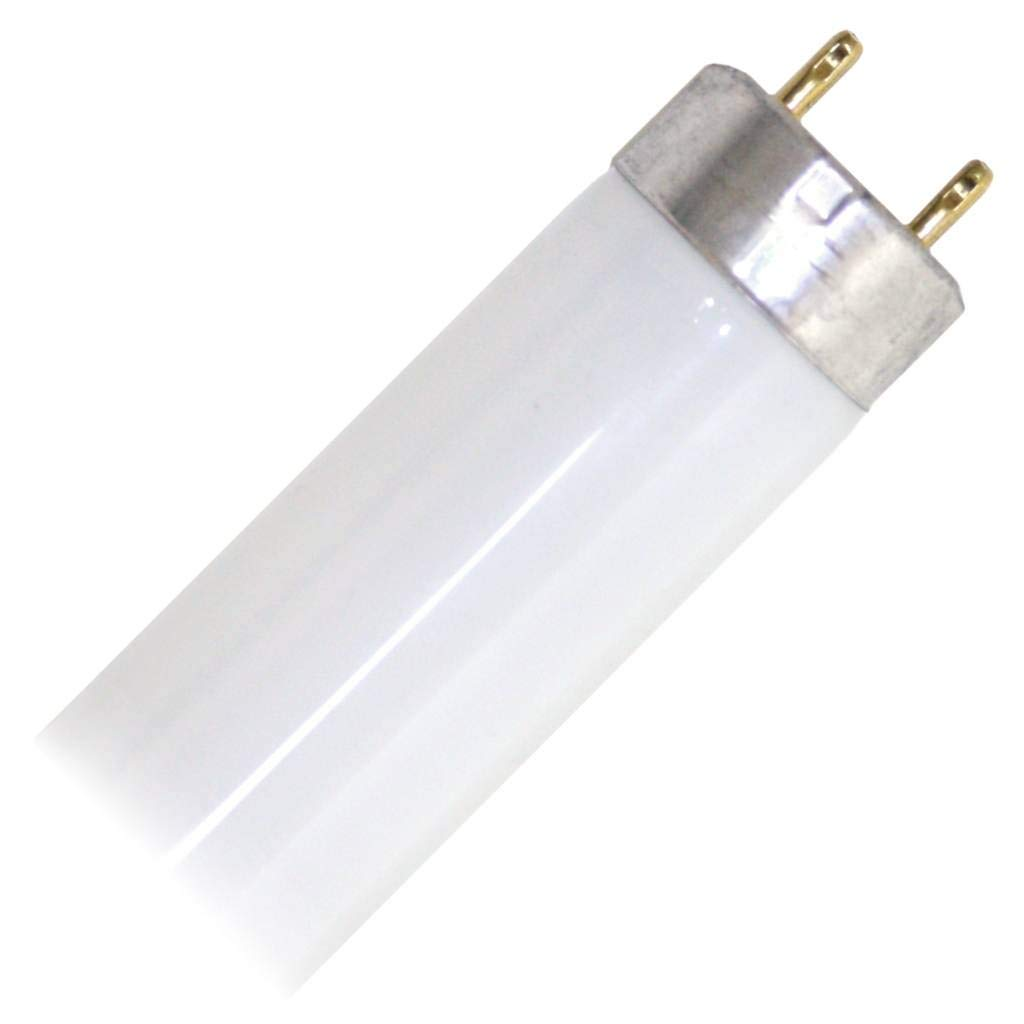 G E Lighting 10316 0 GE 30W 36 CW Fluo Bulb