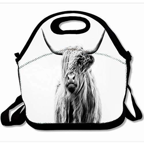 Ahawoso Reusable Insulated Lunch Tote Bag Portrait Of A Highland Cow 10X11 Zippered Neoprene School Picnic Gourmet Lunchbox