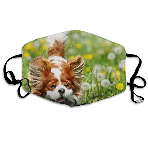 Vtwvg Papillon Dog On The Lawn Washable Reusable Safety Mask, Stylish Polyester Adolescent Couple Dust-Proof Adjustable Earrings
