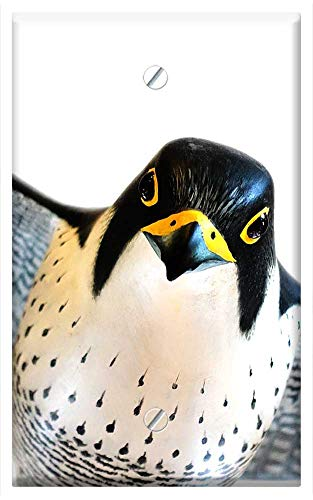 Single-Gang Blank Wall Plate Cover - Peregrine Falcon Bird Model Falco Peregrinus ()