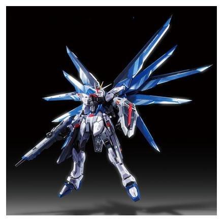 魂ネイション2012限定 METAL BUILD フリーダムガンダム プリズムコートVer.