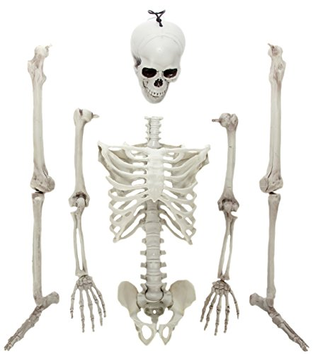 Bag of Bones - Smaller than Life-Size Halloween Skeleton
