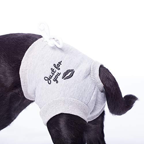 Läufigkeitshöschen für kleine Hunderassen Hundehose Hundehöschen Schutzhose mit Einlagetasche Größe: L hell grau meliert…