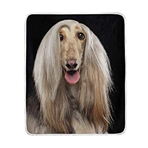 My Daily Afghan Hound Dog Funny Throw Blanket Polyester Microfiber Sofa Warm Couch Bed Blanket 50x60 inch 12