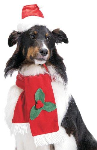 Santa Dog Hat & Scarf Medium