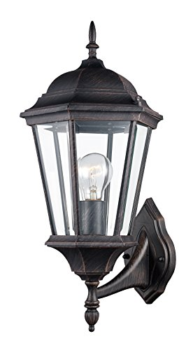 Transglobe Lighting Outdoor 1 Light Wall Lantern
