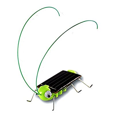 Qinmay Frightened Grasshopper Kit - Solar Powered - Educational Toy: Toys & Games