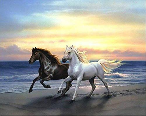 (DIY 5D Diamond Painting Kits for Adults Full Drill Embroidery Paintings Rhinestone Pasted DIY Painting Cross Stitch Arts Crafts for Home Wall Decor 30x40cm/11.8×15.7Inches (Horse))