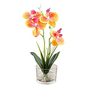 Dynabit Small Handmade Silk Artificial Flower Arrangements with Vase,Vivid Phalaenopsis Orchid Bonsai,Orange 3