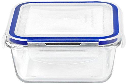 Borosilicate - Recipiente de almacenamiento para microondas y ...