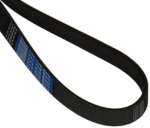 (CARLISLE 170J8 V-Ribbed Belts with 8 Ribs, J Section, Rubber, 0.736 Belt Width, 17.5