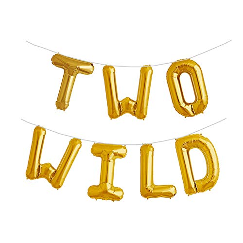 - Two Wild 16 inch Foil Balloons 2nd Birthday Balloon Backdrop Banner for Boy or Girl Jungle Dinosaur Safari Party Supplies Decorations