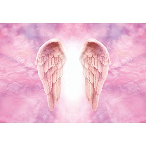 - DORCEV 10x6.5ft Pink Angel Wings Photography Backdrop Girls Birthday Party Baby Shower Background Heaven Sweet Pink Wings Makeup Party Banner Wallpaper Kids Children Adult Photo Studio Props