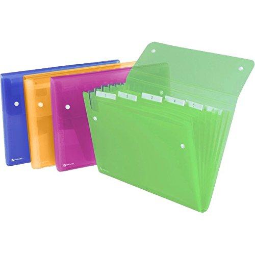 40 opinioni per Rexel Ice Archiviatore a Soffietto A4, Chiusura con Bottone, 13 Tasche, Colori