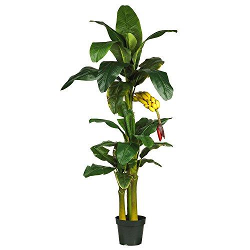 Nearly Natural 6ft Triple Stalk Banana Silk Tree (Shop Banana Tree Furniture)