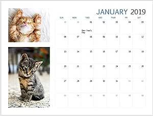 Kittens 2019 - Calendario mensual de vista (sábado, domingo, lindo, maravilloso, gatos, gato pussy, tamaño A4): Amazon.es: Oficina y papelería