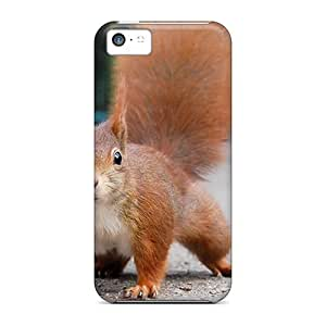 For Iphone 5c Protector Case Squirell Phone Cover
