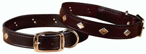 Hamilton 1/2″ x 16″ Diamond Pattern Studded Black Leather Dog Collar, My Pet Supplies