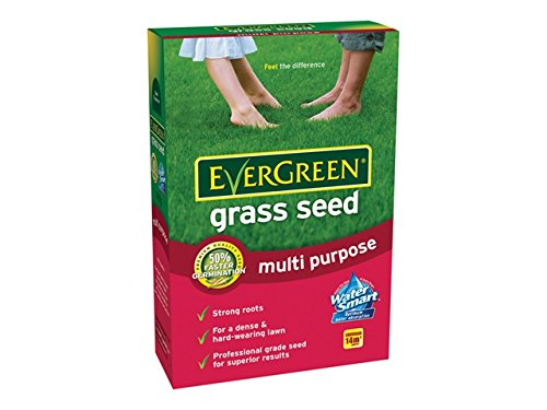 Evergreen Multi-Purpose Grass Seed - 480g Greenfingers
