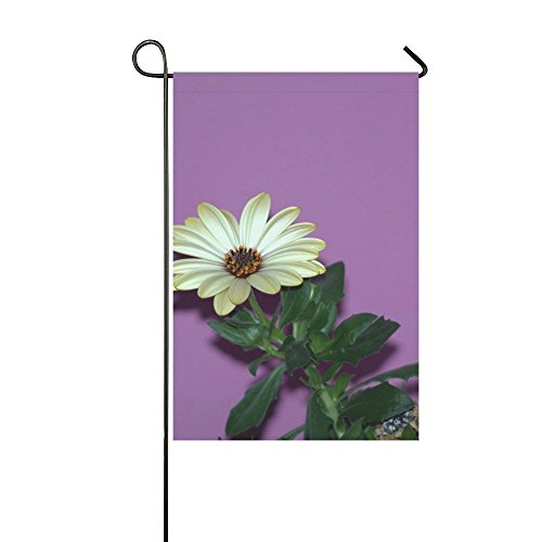 Home Decorative Outdoor Double Sided Flower Aster The Petals Gold Green Petal Daisy Garden Flag,house Yard Flag,garden Yard Decorations,seasonal Welcome Outdoor Flag 12 X 18 Inch Spring Summer ()