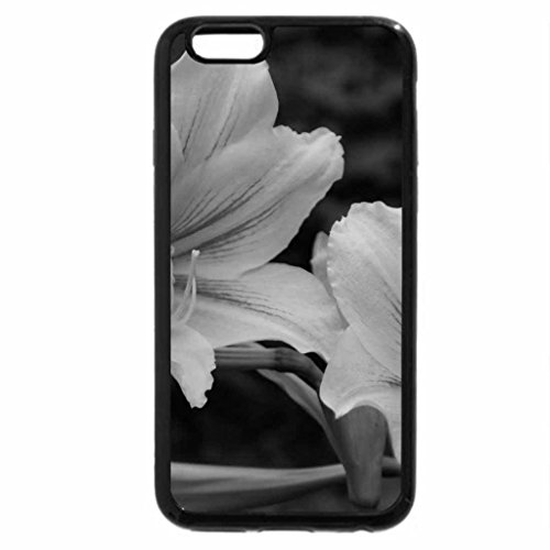 iPhone 6S Case, iPhone 6 Case (Black & White) - Beautiful flowers