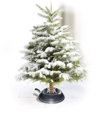 Scènes de l'arbre de Noël