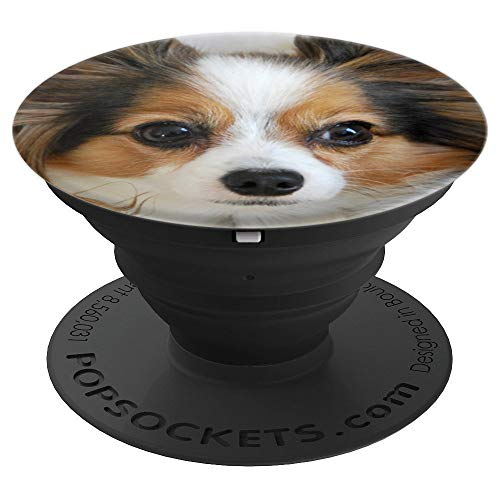 Papillon Dog Face - PopSockets Grip and Stand for Phones and Tablets