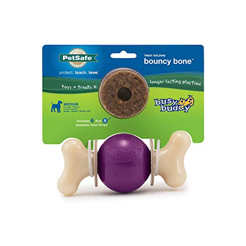 PetSafe Busy Buddy Bouncy Bone Dog Chew Toy – Small, Medium, Medium/Large, Large