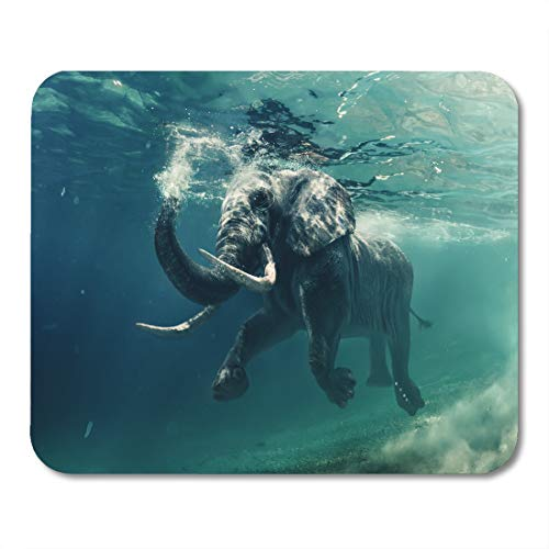 Emvency Mouse Pads Blue Animal Swimming Elephant Underwater African in Ocean Mirrors and Ripples at Water Photography Mousepad 9.5