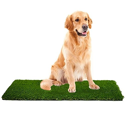 MTBRO Artificial Grass, Professional Dog Grass Mat, Outdoor Potty Training and Replacement Grass Mat, Easy To Clean with Drainage Holes, 100 Ounce/Sq.Yd, 28Inch X 40Inch (Best Grass For Dog Pee)
