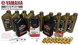 YAMAHA OEM XTO 425 XF425 V8 5.6L Outboard 05W30 4M Full Synthetic Oil Change Kit Lower Unit Gear Case HD Lube w/Drain Fill Gaskets Fuel Filter & NGK Iridium Spark Plugs Maintenance Kit