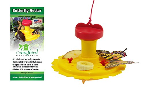 Songbird Essentials Butterfly Feeder Nectar