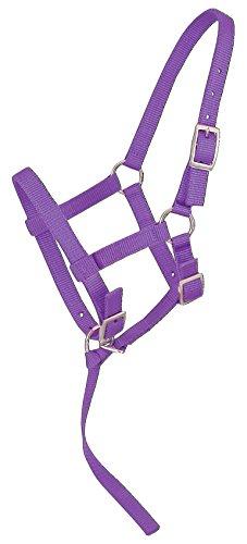 - Tough 1 Adjustable Suckling Halter, Purple, Horse Suckling