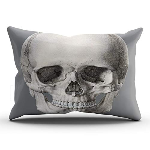 JIENIFO Pillowcases Gray Vintage Human Anatomy Skull Halloween Skeleton Customizable Cushion Decorative Rectangle 12x24 inch Lumbar Size Throw Pillow Cover Case Hidden Zipper One Side Design Printed -
