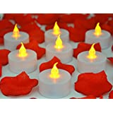 Warm Home & Yard 24 Flamesless Yellow Flickering LED Tealight Candles - (24 pack with Rose Petals)