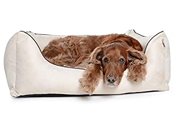 Cama para perros, perro Sofá worldcollection antelina/Velour en crema 5 Tamaños, impermeable, antimanchas, ortopédica, Memory foam: Amazon.es: Productos ...