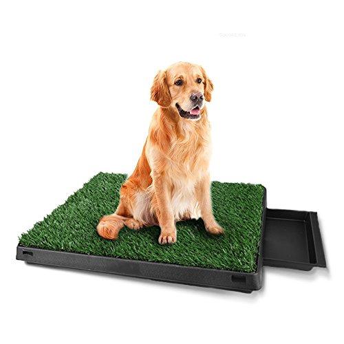 Homdox Dog Grass Pee Potty Grass Patch Potty Puppy Potty Training Grass