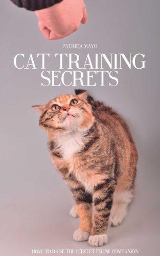 Cat Training Secrets: How To Raise  The Perfect Feline Companion