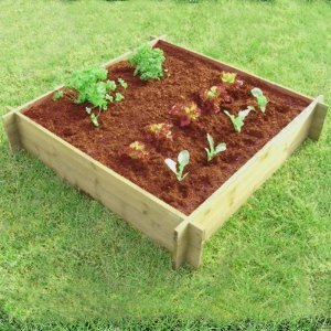 Forestfox Raised Wooden Bed. FSC Wood. Solid. 1m x 1m x 32cm Tall. Easy Assembly. Garden.