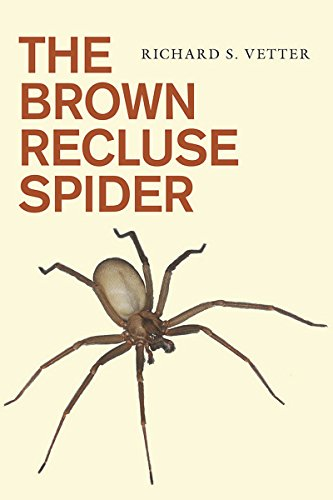 The Brown Recluse Spider (Best Way To Rid House Of Spiders)