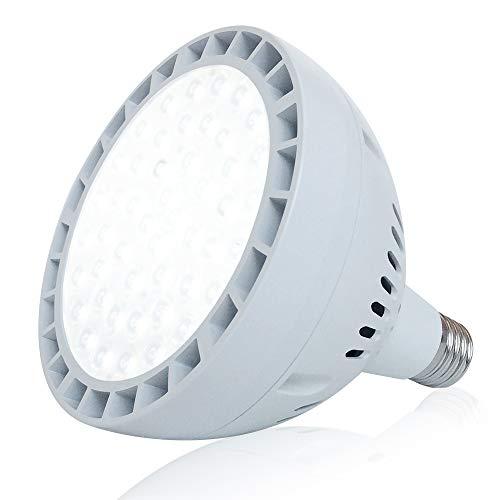 1000 Watt Led Light Bulb in US - 3