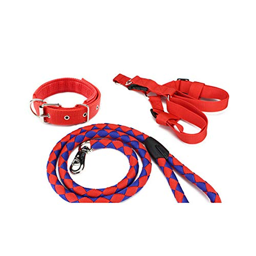 Red+bluee L (2040 kg)HBWJSH Pet Supplies, Dog Leash, Large Medium Small Dog Chain, Dog Collar, Hyena Rope, Multicolor Optional (color   Black+orange, Size   XL (4079 kg))