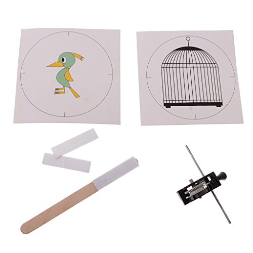 MonkeyJack Inventive Whirligig Model Building Kits Kid DIY Toy Pull Back Brids in Cage Educational Toy Physical Common Sense