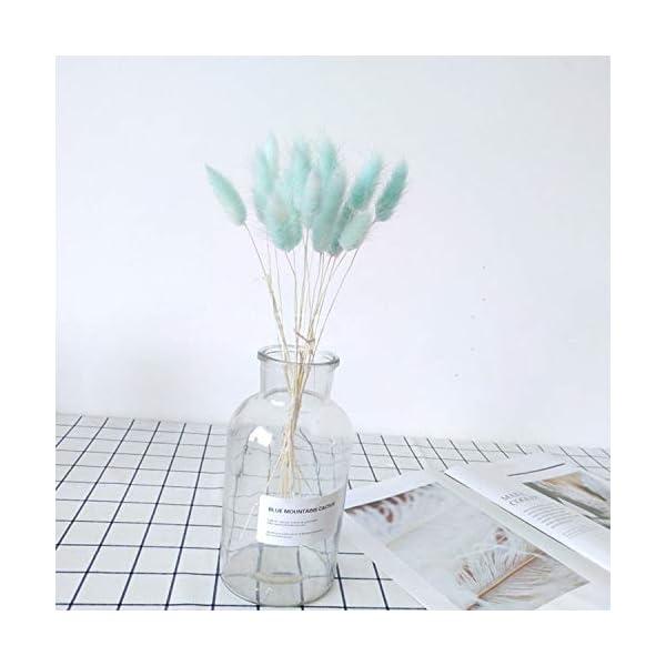 BNDOEUXM 20Pcs Natural Dried Flowers White Artificial Flowers Colorful Fake Rabbit Tail Grass Foxtail Bouquet Long Bunches Blue