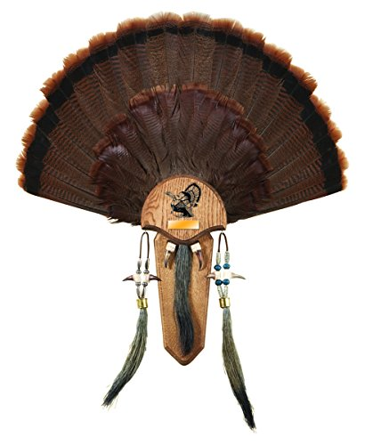 Hunters Specialties H.S. Strut Three Beard Mounting Plaque (Optional Fan Kit)
