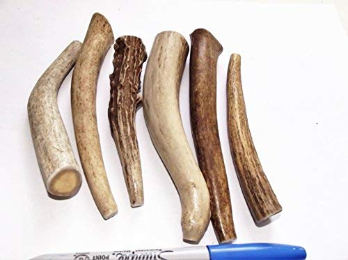 Small Antler Dog Chews 6-Pack 4-6-Inches for Teacup Little dogs 1.lb to 5.lb.