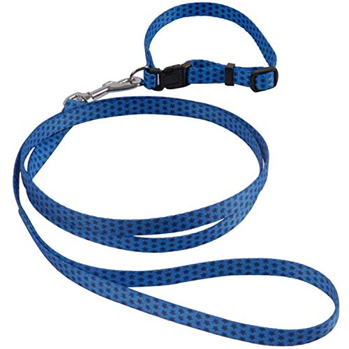 shine-hearty Dogs Leashes for Small Pet Dog Polyster Leash Pets Dogs Training Dog-Collar Leashes,Blue,S 1.0 x 120 cm