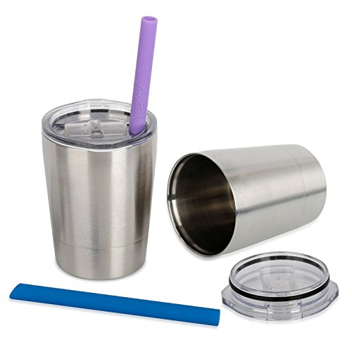 Housavvy Stainless Steel Cups with Lids and Straws, 8.5 OZ, Set of 2 (Kids Sippy Cups Insulated compare prices)